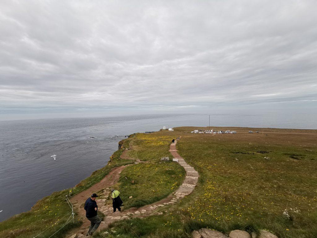 Island Sehenswürdigkeit Hornstrandir Naturschutzgebiet